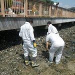 ドリームプラザ海岸清掃
